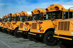 Blog school bus